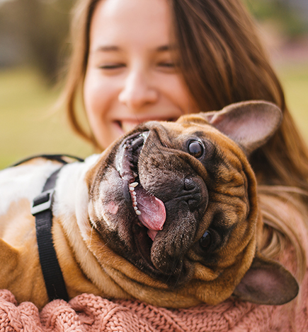 woman holding smiling pug